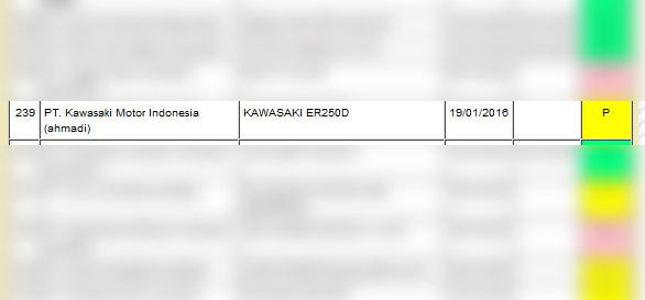 kawasaki er250d
